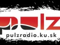 pulz_logo